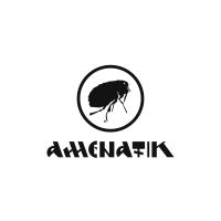 http://alexeystar.com/files/gimgs/th-30_portfolio_logotypes_amenatik.png